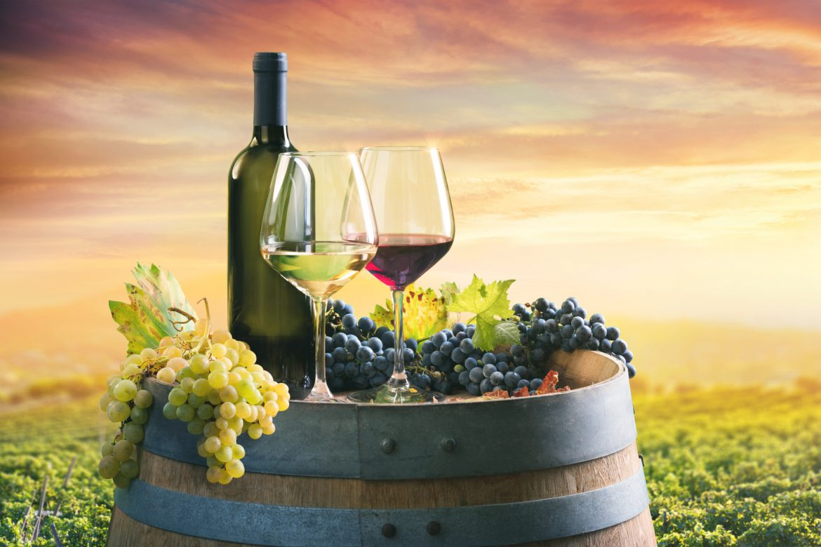 Wines from the vineyards to your doorstep